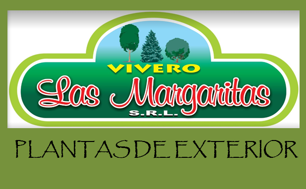 VIVERO LAS MARGARITAS SRL