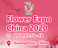 CHINA INTERNATIONAL FLORICULTURE & HORTICULTURE TRADE FAIR - MARCH 2020